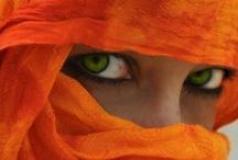 Orange / by Tracy Smith