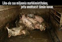 Sikatehtaat.fi