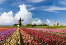 I ❤️ Holland