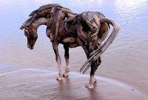 Heather Jansch / Heather Jansch  driftwood sculpturen