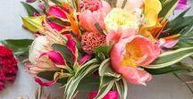 Beach Wedding Bouquets / Bouquet ideas and bouquets from beach weddings and tropical weddings. Beach and tropical theme bridal bouquets.