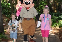Animal Kingdom Park / Learn while you play at Animal Kingdom Park!