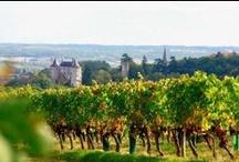 Aquitania / Prepárate para vivir toda una aventura en Aquitania. Es conocida por ser una de las regiones más gastronámicas e históricas de Francia. Tendrás mucho que visitar y tu paladar descubrirá nuevos sabores, texturas y productos locales.
