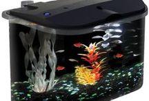 Fish Aquarium Ideas / Ideas For Aquariums and Aquarium Supplies For Your Pet Fish