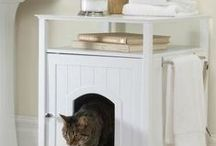 Purring Cat Ideas / Products To Make Your Cat Purr Happily