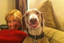 Funny Dog Happy Faces / Just some dog pics to make you smile!