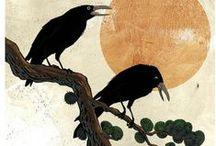 raven-kraaien-kouwen-spreeuwen