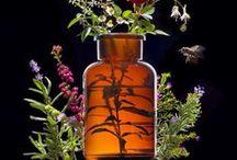 APIVITA / #apivita #cosmetica #abejas #grecia #griega