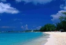 Grand Cayman / My favorite place!!! / by Stephanie Zuker
