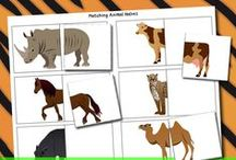 Unit Ideas: Animal Kingdom / Animal Kingdom educational activities for kids.  / by Katie @ Gift of Curiosity