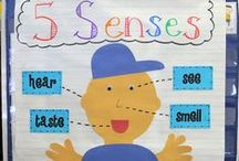 Unit Ideas: The 5 senses / Educational ideas to teach about the five senses and stimulate and develop the senses. / by Katie @ Gift of Curiosity