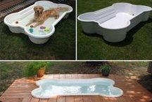 DIY Pet Projects / Cool ideas to spoil your fur-babies!