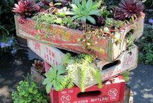 Garden and outdoor ideas / Gardening in small spaces; clever garden tips