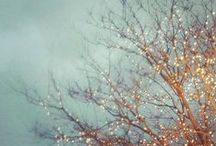 Winter Wonderlands / Charming, nostalgic, and atmospheric winter scenes to help me readjust my attitude toward winter.