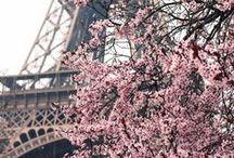FRANCE / Travel • France | Paris, Provence & Cafes.