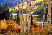 Fall in Colorado / Stunning photos of Colorful Colorado and things to do to enjoy the fall season in this beautiful state!