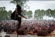 Edition 2013 / Regga Sun Ska Festival