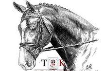 Horses, Koně / Kresba a malba koní