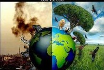 Respect the Environment!!!