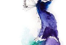 Birds / Beautiful