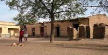 Mali Rising 2012-2013 Partner