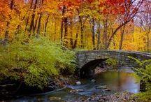 Seasonal Photographs / Beautiful photographs of the changing seasons
