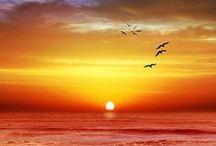 Sun Photographs / Sunrise, sunsets and stunning sun photographs