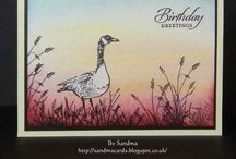 SU Wetlands / Beautiful stamps by Stampin' Up!