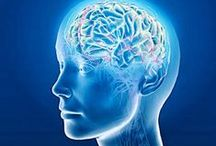 ◘Alzheimer's Disease / News, research, clinical trials, skill management focusing on Alzheimer's  Disease.