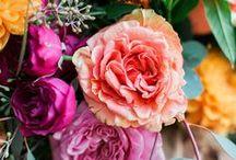 Flowers / Floral arrangements and bouquets