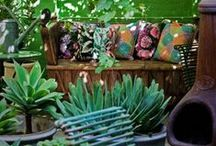 Gardening/Patio / Gardening. My favorite way to stay sane! I have a bit if an obsession ;) / by Blair Ebanks