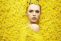 Yellow Mellow / by Loreen Álvarez Browne