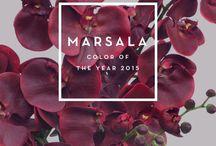 Pantone 2015 Marsalla / Color Trends / by Loreen Álvarez Browne