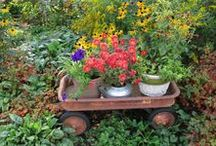 Recycled Items in the Garden and Home / Repurposed, recycled or upcycled!