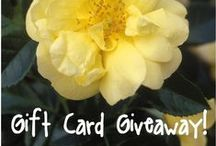 Gardening Contests & Giveaways / Follow this board for the latest gardening contests and giveaways! (Any pins unrelated to gardening contests and giveaways will be removed.)