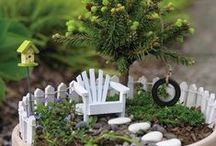 Fairy garden / Fairy gardens for my little believers