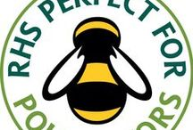 Bee Friendly Plants / We Love Bees, Butterflies and all Pollinating insects! they play such an important part in our existence yet are often overlooked when planning a garden. Here at Beechdale we want to encourage and help people to make life better for bees :)