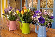 Gardening: Potty for pot plants / Craft your garden