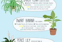 Gardening: plant cheat sheets