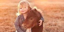 Horses - True Love