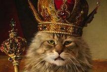 Cats : Aristocrats.