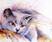 Cats : All types of paintings.