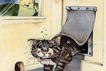 Cats : Gary Patterson.