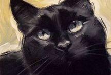 Cats : Black cats.