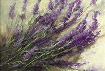 FL : Lavender.