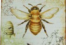 Art : Bees.