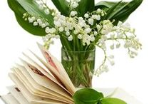 FL : Lily of the valley.