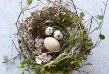 "DECORATIONS ""bird nest"""