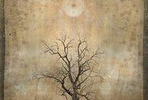 Sense : Mystic trees.