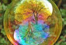 Sense : Love for the earth.
